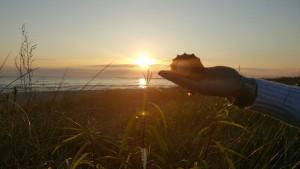 moře a slunce