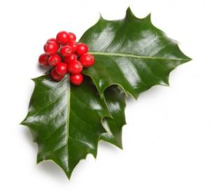 Vánoce, výklady karet