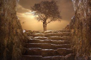 Výklady snů - schody